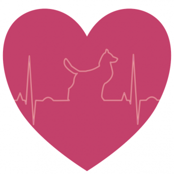 Nutritional Help for Dogs with Heart Failure