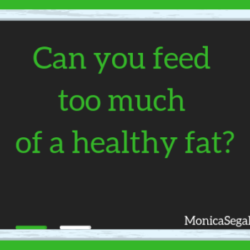 Can You Feed Too Much of a Healthy Fat?
