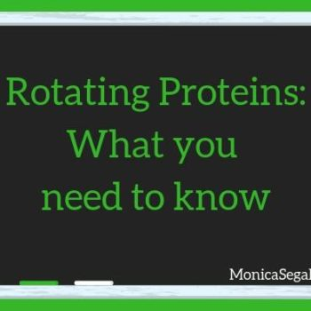 Does Rotating Proteins Guarantee Your Dog Won't Develop a Food Allergy?